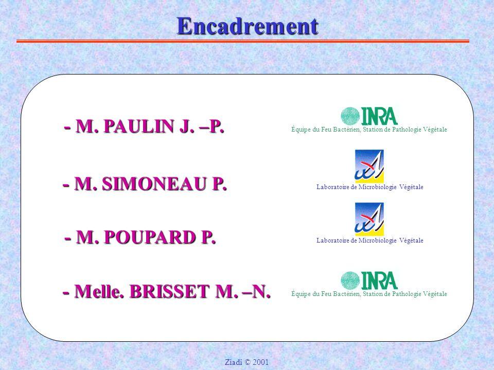 Encadrement - M.SIMONEAU P. Laboratoire de Microbiologie Végétale - M.