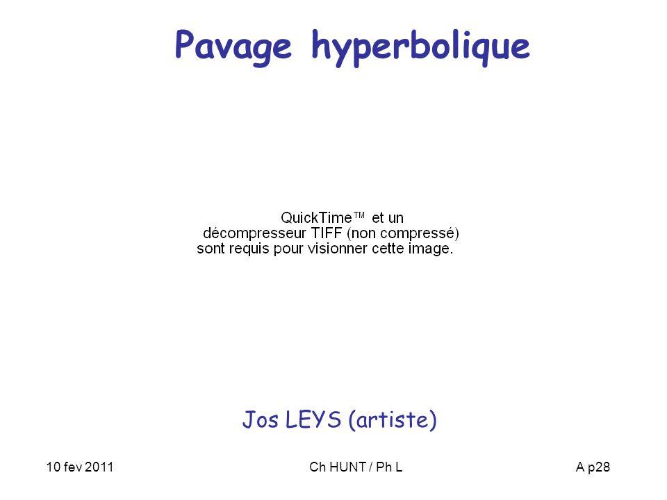 10 fev 2011Ch HUNT / Ph LA p28 Pavage hyperbolique Jos LEYS (artiste)