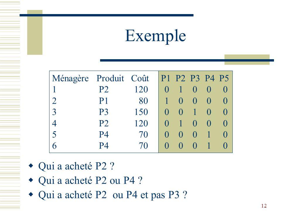 12 Exemple  Qui a acheté P2 ?  Qui a acheté P2 ou P4 ?  Qui a acheté P2 ou P4 et pas P3 ? Ménagère Produit Coût P1 P2 P3 P4 P5 1 P2 120 0 1 0 0 0 2