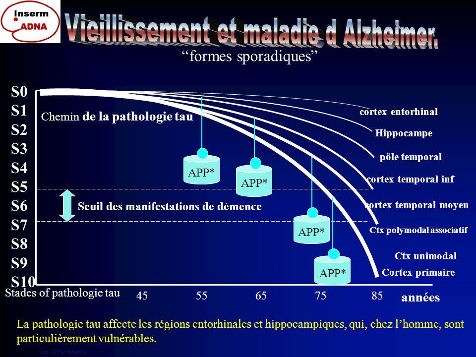 Stage 0: pas de détection de PHF-Tau Stage 1: cortex transentorhinal Stage 2: cortex entorhinal Stage 3: hippocampe Stage 4: pôle temporal Stage 5: cortex temporal inférieur Stage 6: cortex temporal moyen Stage 7: cortex polymodal associatif Stage 8: cortex unimodal Stage 9a,b,c: cortex secondaire moteur et sensitif Stage 10: cortex primaire moteur et sensitif S0 S1 S2 S3 S4 S5 S6 S7 S8 S9 S10 Progression de tau La pathologie Tau connaît l'anatomie 10 stades pour la pathologie Tau Normal MCI Démence