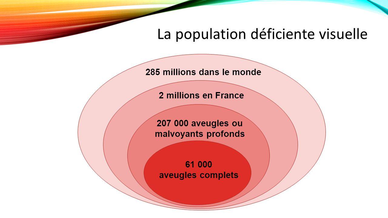 285 millions dans le monde 2 millions en France 207 000 aveugles ou malvoyants profonds 61 000 aveugles complets La population déficiente visuelle