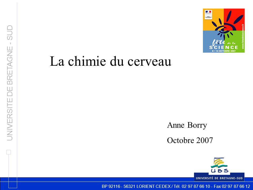 BP 92116 - 56321 LORIENT CEDEX / Tél. 02 97 87 66 10 - Fax 02 97 87 66 12 UNIVERSITE DE BRETAGNE - SUD La chimie du cerveau Anne Borry Octobre 2007