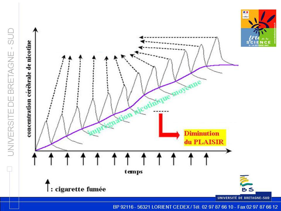 BP 92116 - 56321 LORIENT CEDEX / Tél. 02 97 87 66 10 - Fax 02 97 87 66 12 UNIVERSITE DE BRETAGNE - SUD Mais : désensibilisation des récepteurs décharg