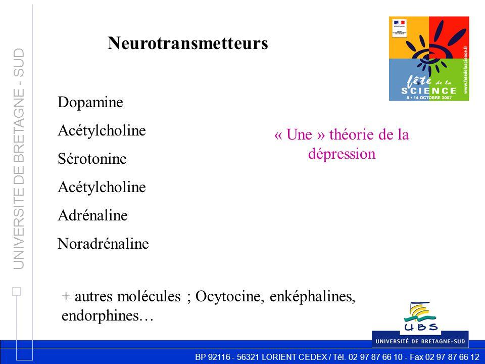 BP 92116 - 56321 LORIENT CEDEX / Tél. 02 97 87 66 10 - Fax 02 97 87 66 12 UNIVERSITE DE BRETAGNE - SUD Neurotransmetteurs Dopamine Acétylcholine Sérot