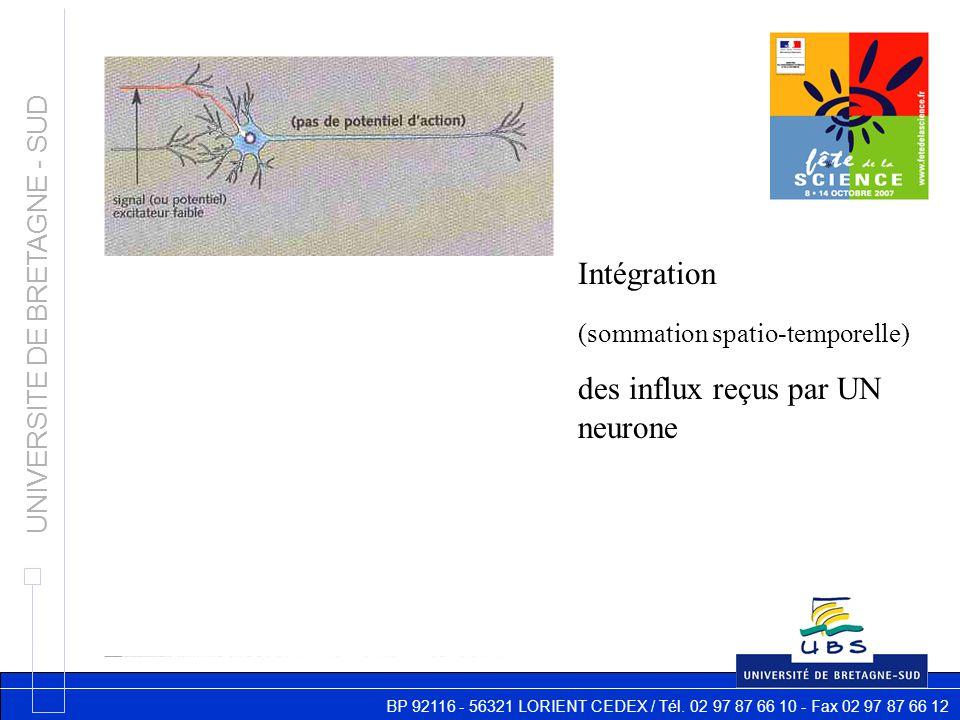BP 92116 - 56321 LORIENT CEDEX / Tél. 02 97 87 66 10 - Fax 02 97 87 66 12 UNIVERSITE DE BRETAGNE - SUD Intégration (sommation spatio-temporelle) des i