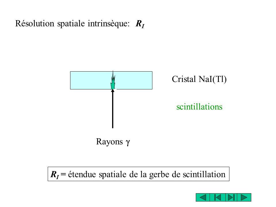 Résolution spatiale intrinsèque: R I Cristal NaI(Tl) Rayons  scintillations R I = étendue spatiale de la gerbe de scintillation