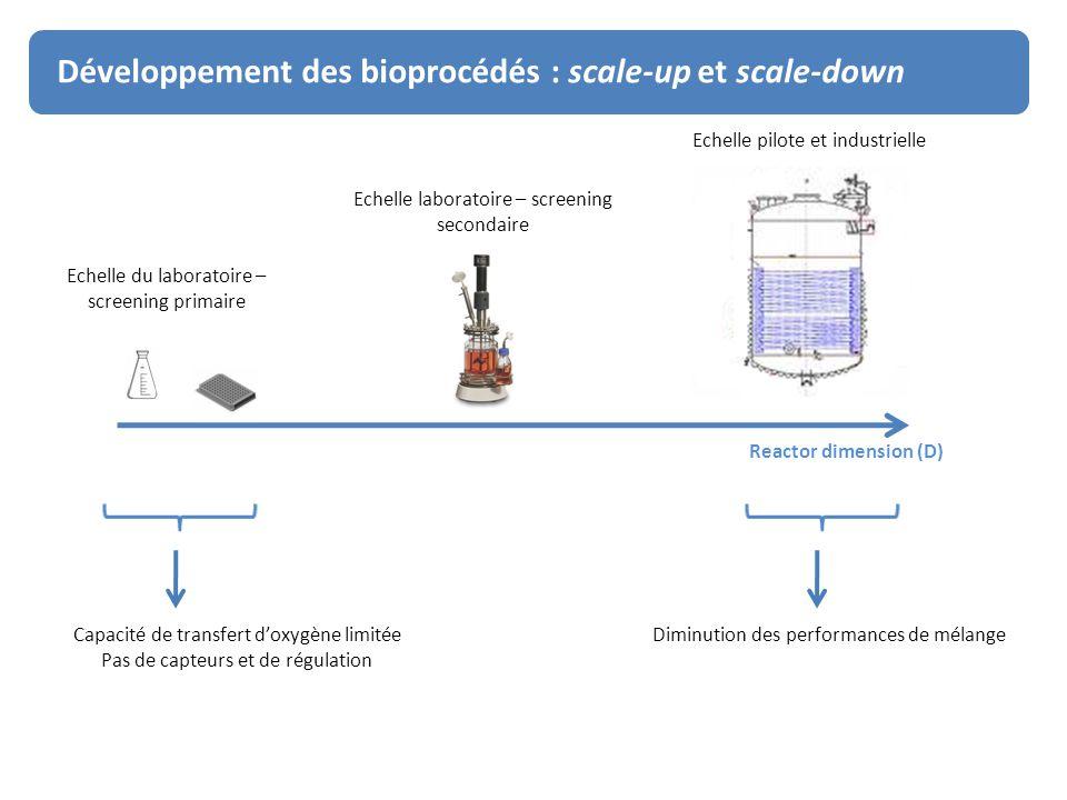 Développement des bioprocédés : scale-up and scale-down Développement des bioprocédés : scale-up et scale-down Echelle du laboratoire – screening prim