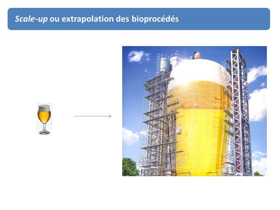 Scale-up ou extrapolation des bioprocédés