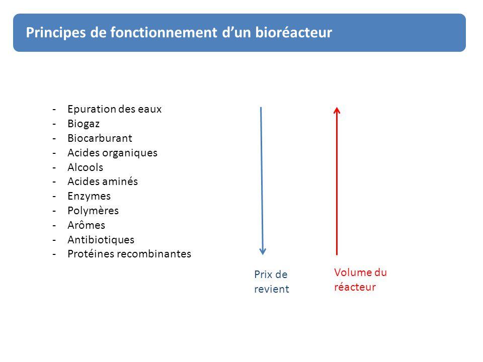 Principe de fonctionnement des bioréacteurs Principes de fonctionnement d'un bioréacteur -Epuration des eaux -Biogaz -Biocarburant -Acides organiques