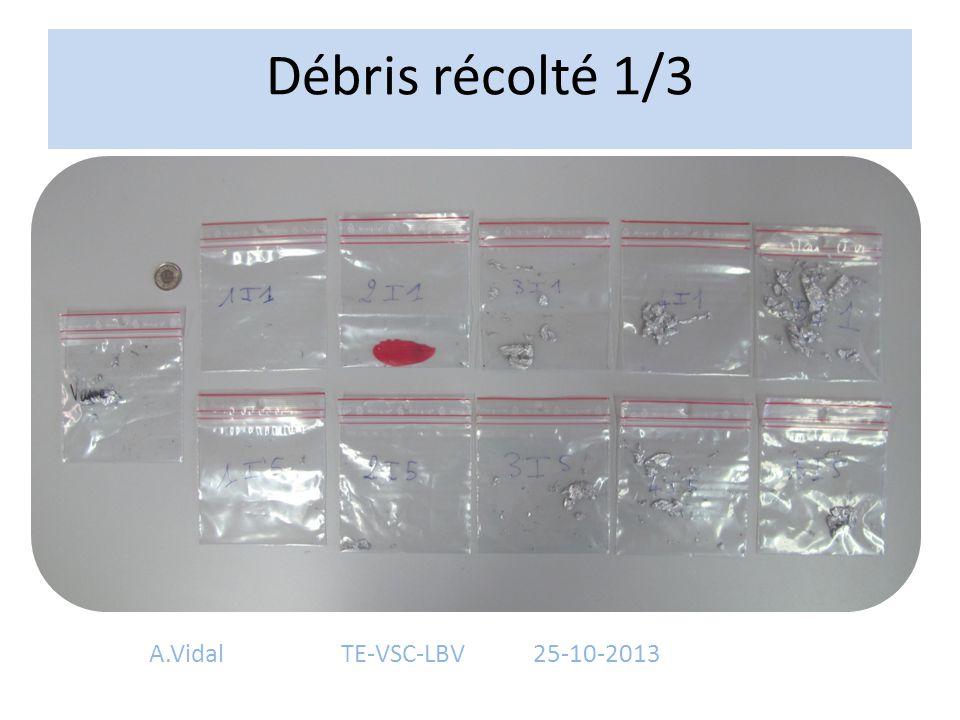 Débris récolté 1/3 A.VidalTE-VSC-LBV25-10-2013