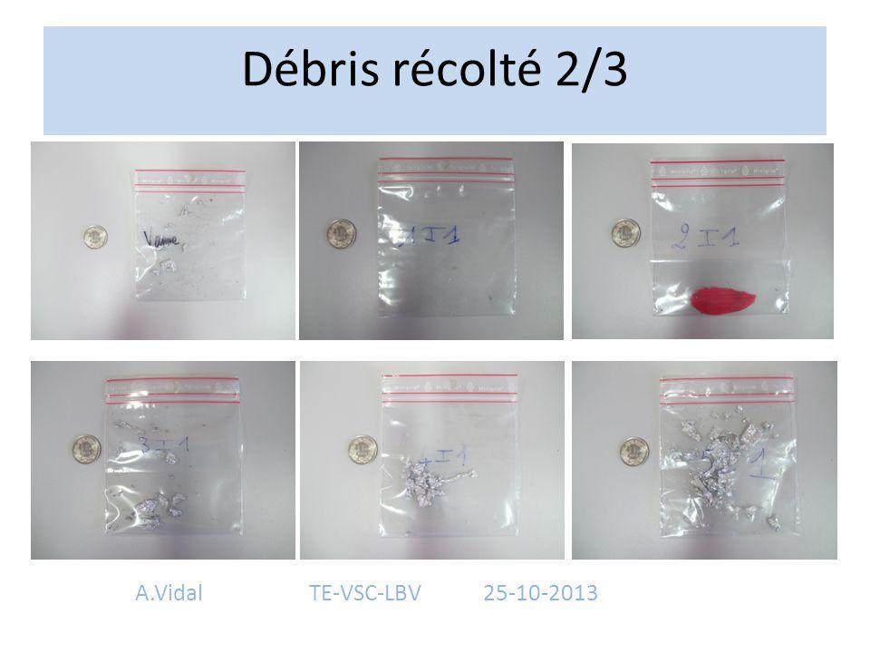 Débris récolté 2/3 A.VidalTE-VSC-LBV25-10-2013