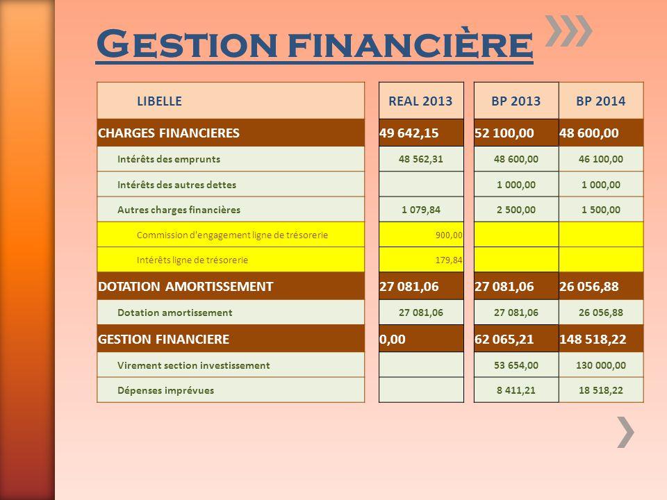 Gestion financière LIBELLEREAL 2013BP 2013BP 2014 CHARGES FINANCIERES49 642,1552 100,0048 600,00 Intérêts des emprunts48 562,3148 600,0046 100,00 Inté