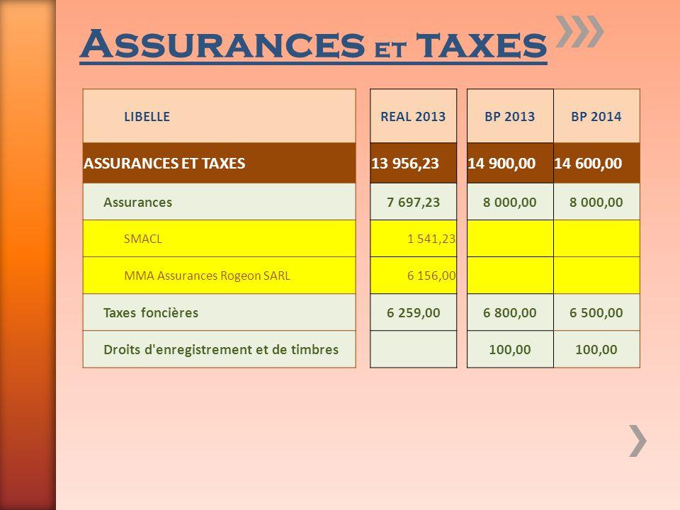 Assurances et taxes LIBELLEREAL 2013BP 2013BP 2014 ASSURANCES ET TAXES13 956,2314 900,0014 600,00 Assurances7 697,238 000,00 SMACL1 541,23 MMA Assuran