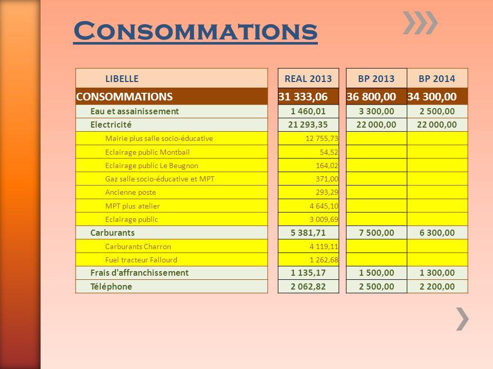 Consommations LIBELLEREAL 2013BP 2013BP 2014 CONSOMMATIONS31 333,0636 800,0034 300,00 Eau et assainissement1 460,013 300,002 500,00 Electricité21 293,