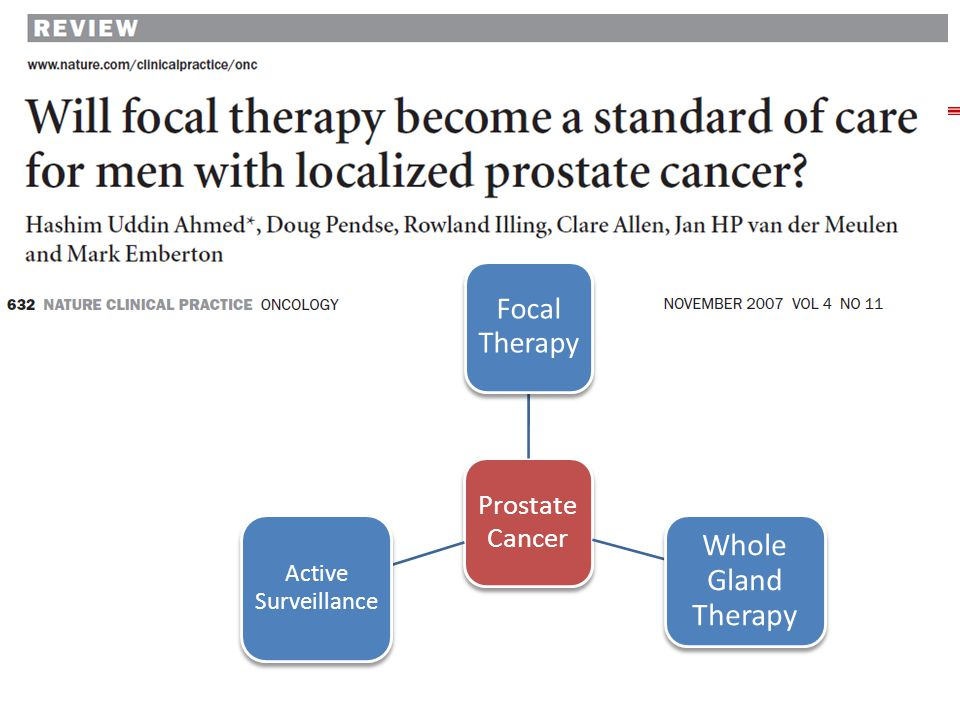 Prostate Cancer Focal Therapy Whole Gland Therapy Active Surveillance