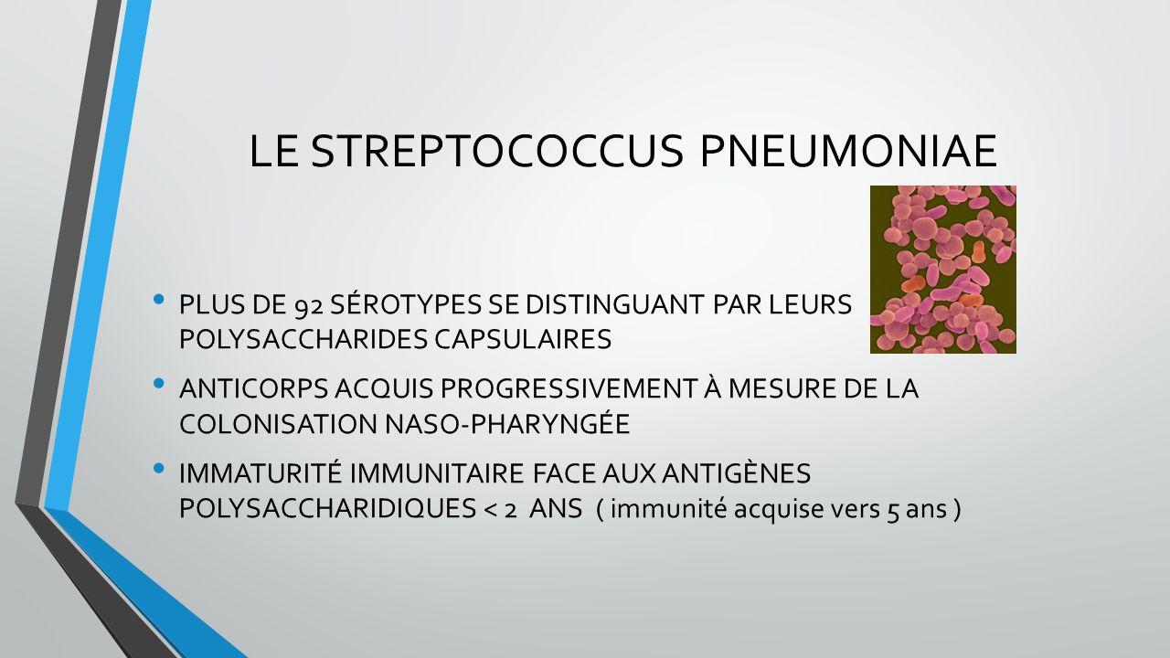 LE STREPTOCOCCUS PNEUMONIAE PLUS DE 92 SÉROTYPES SE DISTINGUANT PAR LEURS POLYSACCHARIDES CAPSULAIRES ANTICORPS ACQUIS PROGRESSIVEMENT À MESURE DE LA