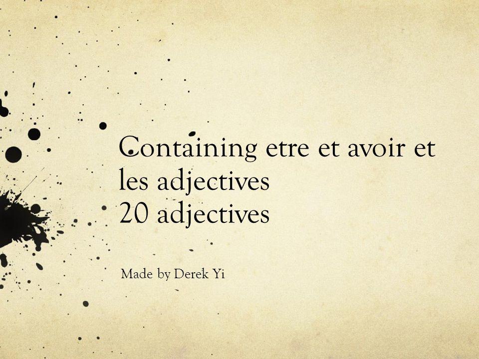 Containing etre et avoir et les adjectives 20 adjectives Made by Derek Yi
