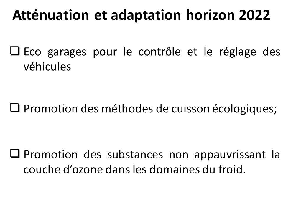Atténuation et adaptation horizon 2022  Eco garages pour le contrôle et le réglage des véhicules  Promotion des méthodes de cuisson écologiques;  Promotion des substances non appauvrissant la couche d'ozone dans les domaines du froid.