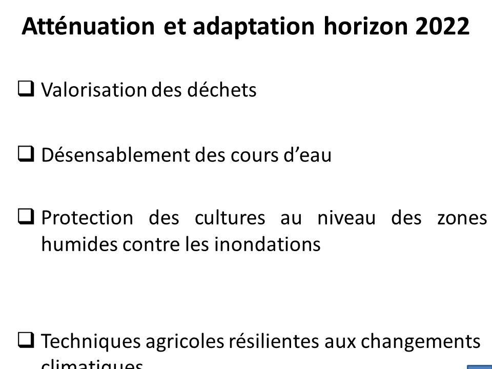 Atténuation et adaptation horizon 2022  Valorisation des déchets  Désensablement des cours d'eau  Protection des cultures au niveau des zones humides contre les inondations  Techniques agricoles résilientes aux changements climatiques 11