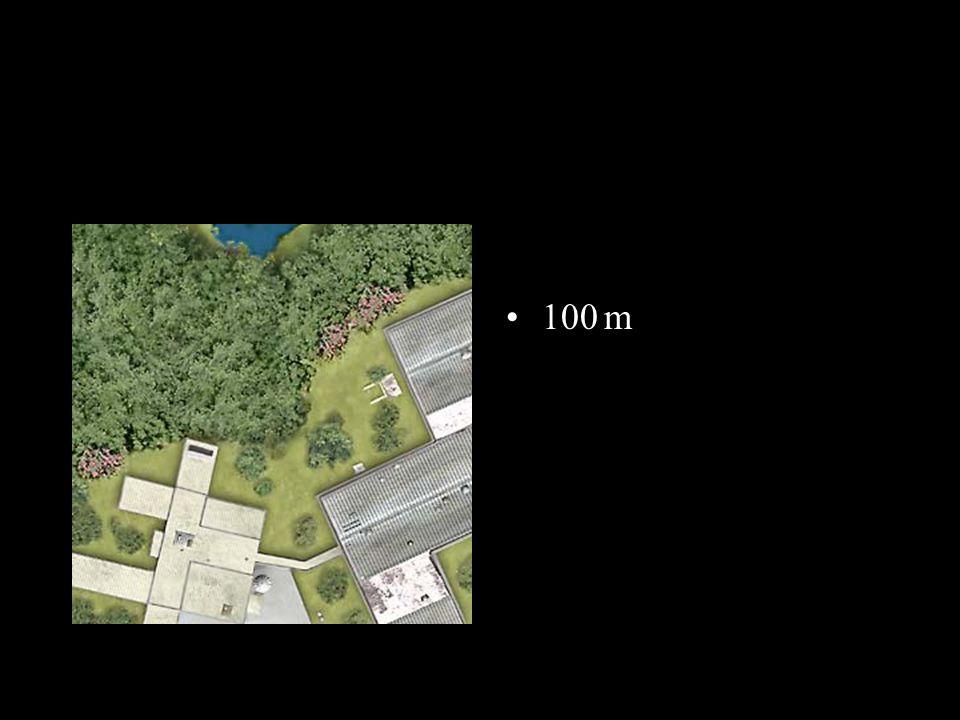 Des chênes 10m