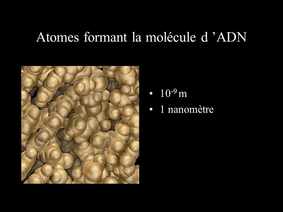 A la périphérie d 'un atome de carbone 10 -10 m 1 Angström