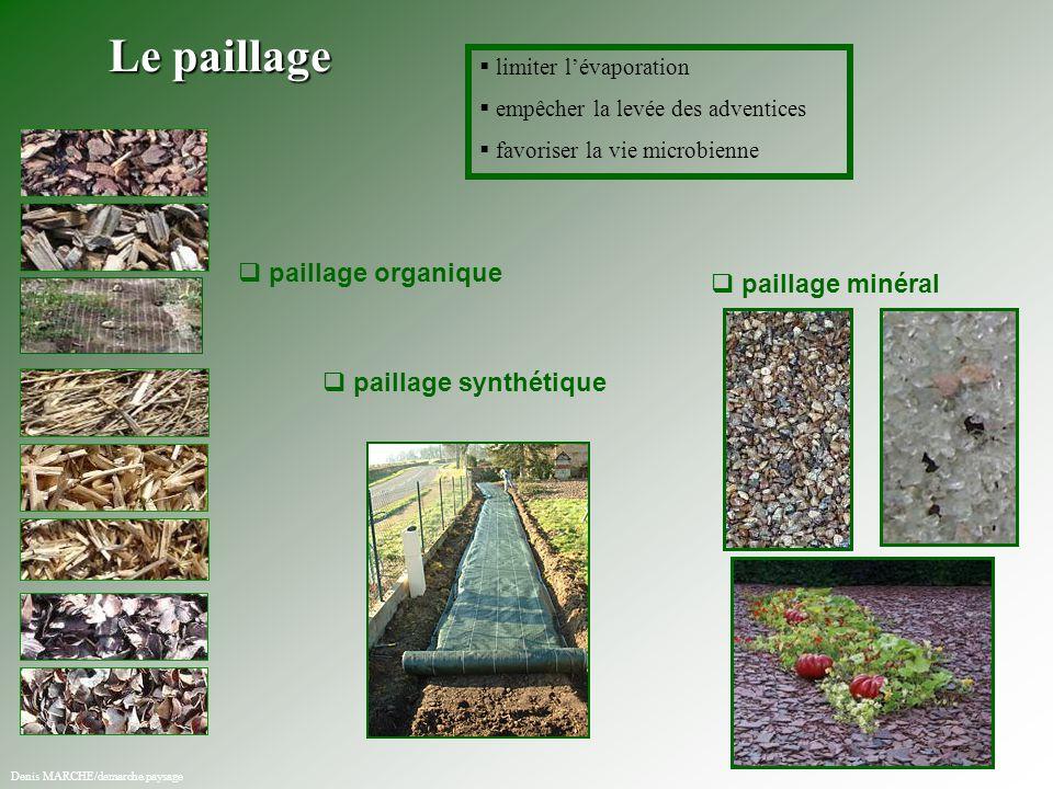   limiter l'évaporation   empêcher la levée des adventices   favoriser la vie microbienne   paillage organique   paillage synthétique   pa