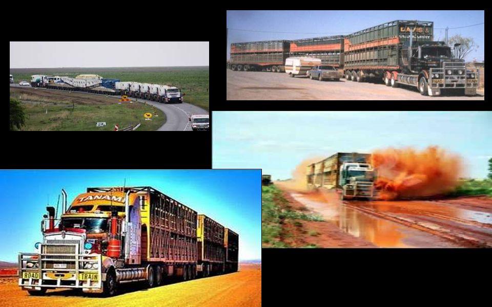 Ces trains de route sont utilisés pour transporter toutes sortes de matériels comme le bétail, le carburant, des minerais … Ces transports, très rentables, ont un rôle significatif dans le développement économique de secteurs éloignés et de quelques communautés totalement dépendantes d un service régulier.