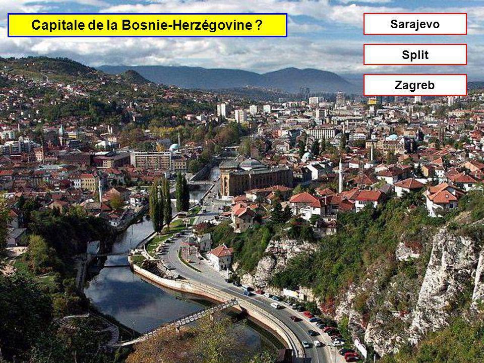 Capitale de la Slovaquie Bratislava Belgrade Brno