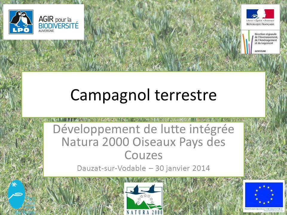 Campagnol terrestre Développement de lutte intégrée Natura 2000 Oiseaux Pays des Couzes Dauzat-sur-Vodable – 30 janvier 2014