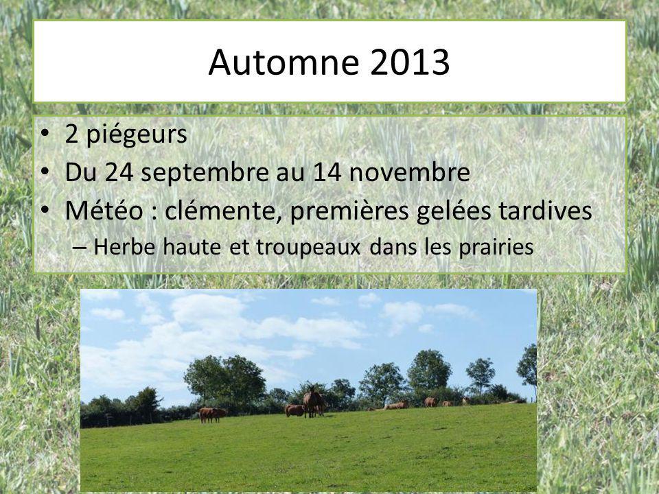 Automne 2013 2 piégeurs Du 24 septembre au 14 novembre Météo : clémente, premières gelées tardives – Herbe haute et troupeaux dans les prairies