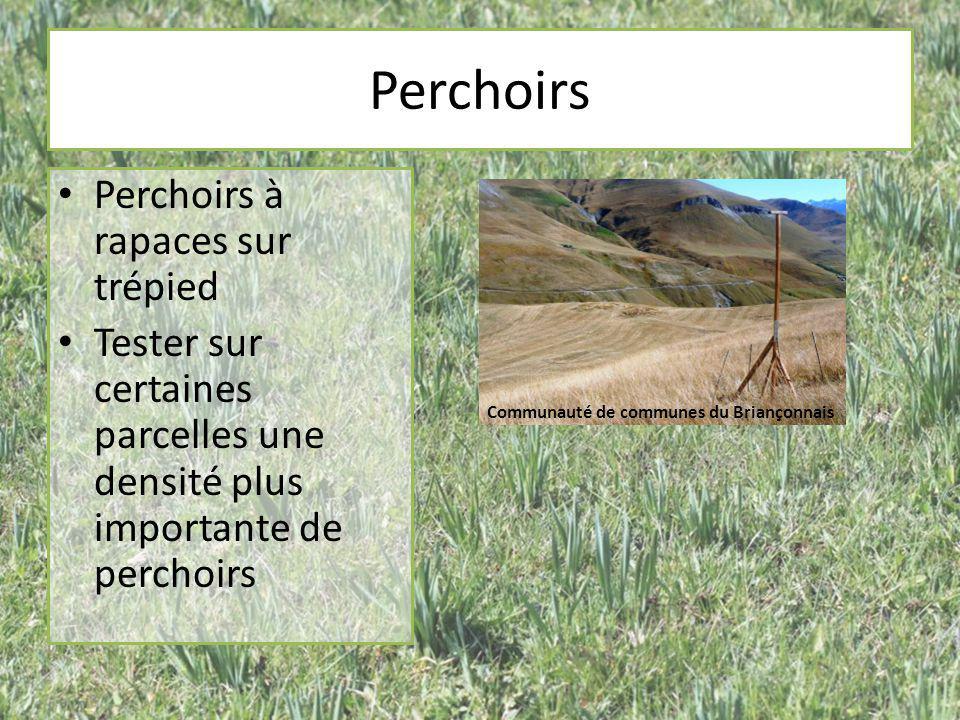 Perchoirs Perchoirs à rapaces sur trépied Tester sur certaines parcelles une densité plus importante de perchoirs Communauté de communes du Briançonna