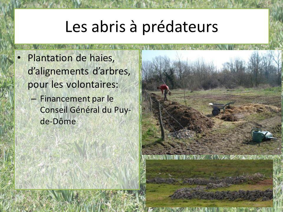 Les abris à prédateurs Plantation de haies, d'alignements d'arbres, pour les volontaires: – Financement par le Conseil Général du Puy- de-Dôme