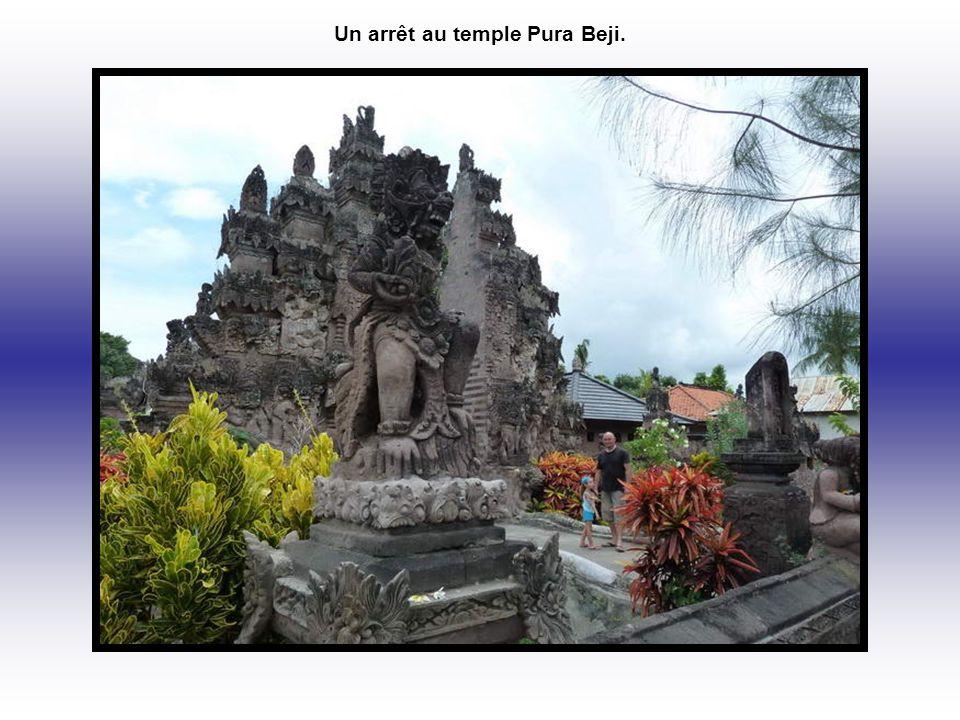 Un arrêt au temple Pura Beji.