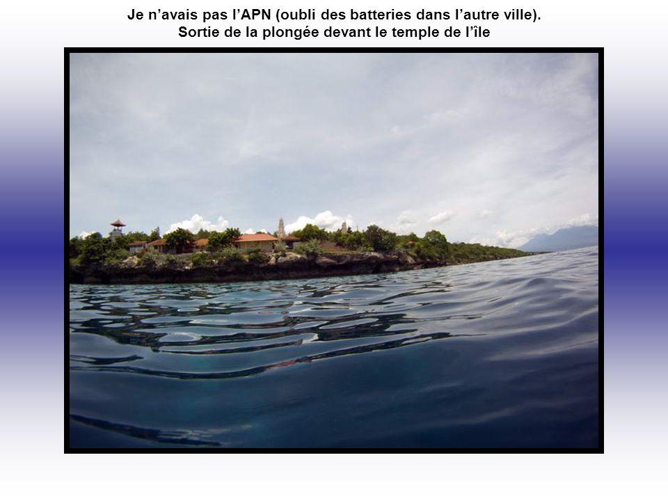 Inter plongée, petite marche sur l'île.