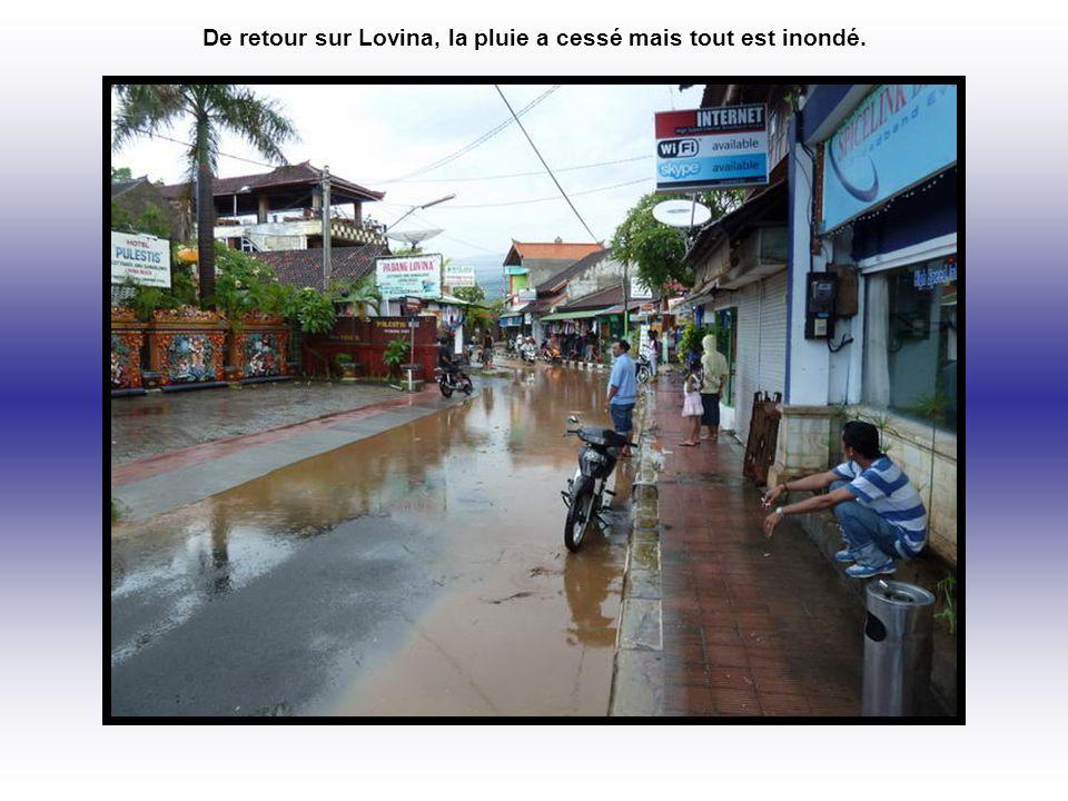 De retour sur Lovina, la pluie a cessé mais tout est inondé.