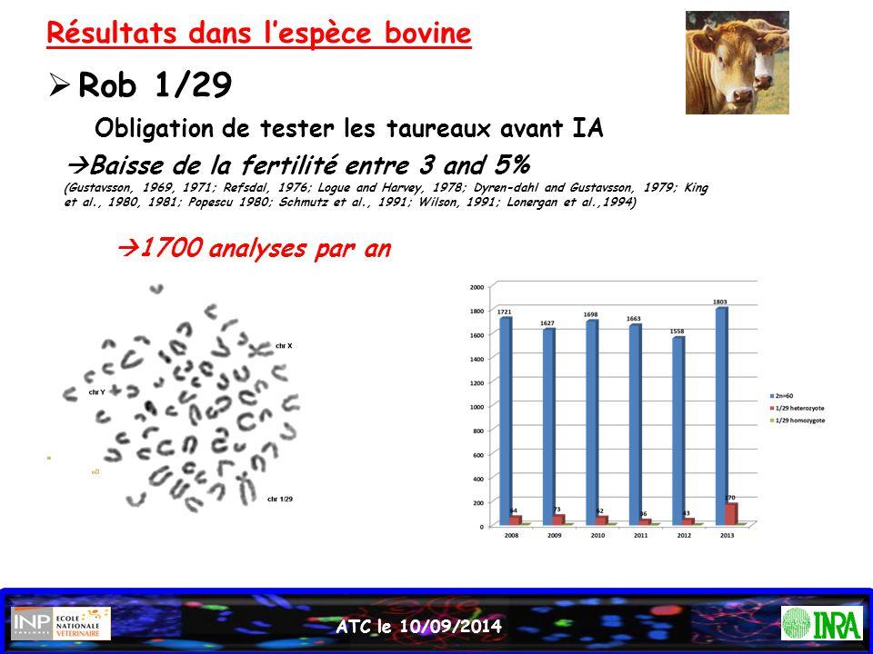 ATC le 10/09/2014 Résultats dans l'espèce bovine  Rob 1/29 Obligation de tester les taureaux avant IA  Baisse de la fertilité entre 3 and 5% (Gustav