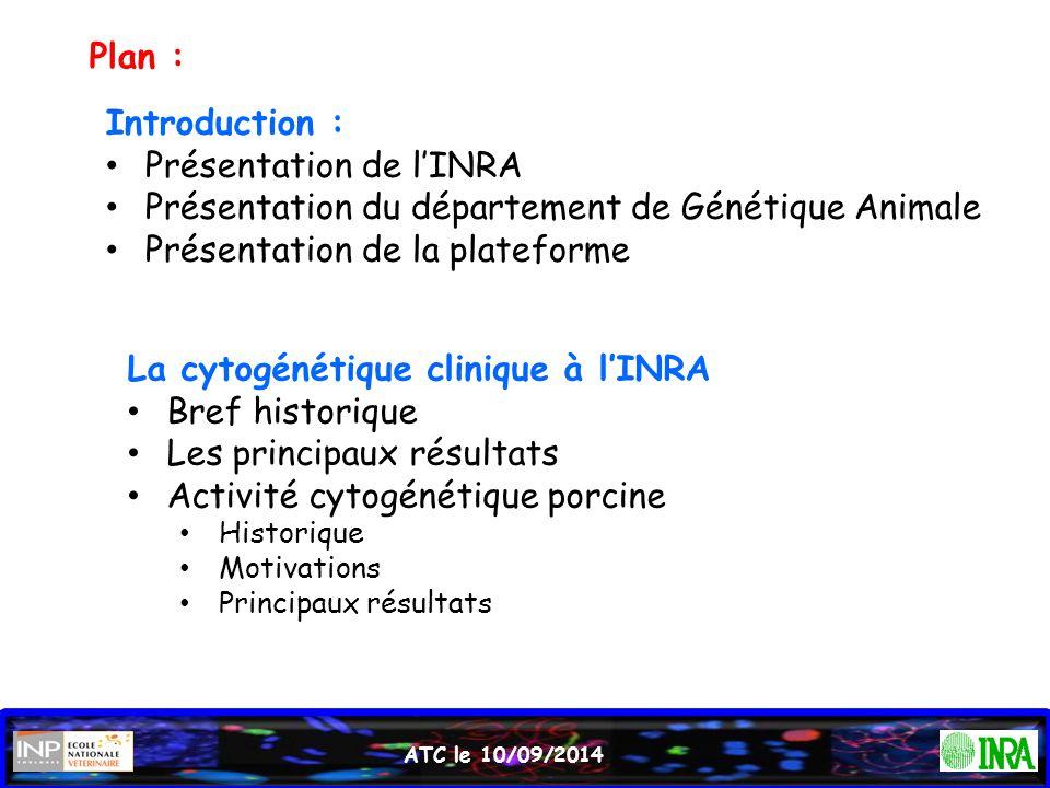 Plan : Introduction : Présentation de l'INRA Présentation du département de Génétique Animale Présentation de la plateforme La cytogénétique clinique