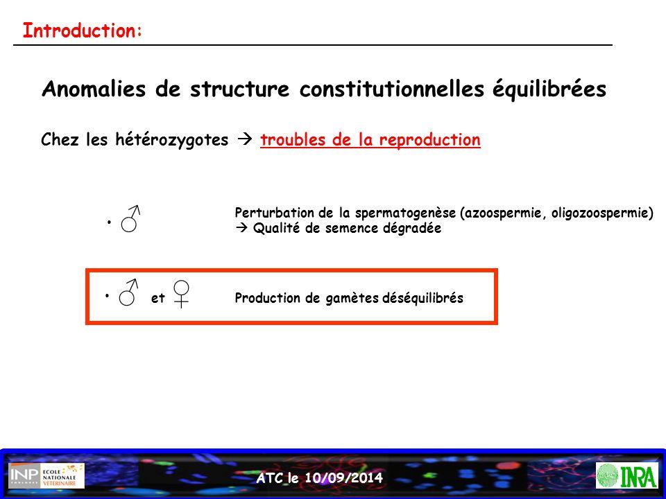 ATC le 10/09/2014 Anomalies de structure constitutionnelles équilibrées Chez les hétérozygotes  troubles de la reproduction ♂ ♂ et ♀ Perturbation de