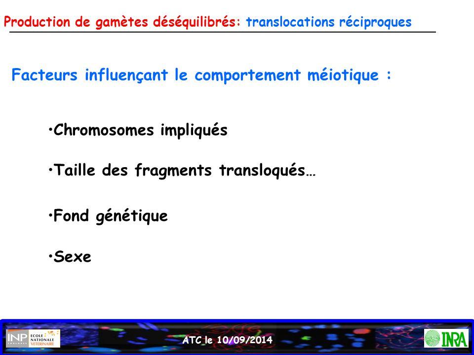 ATC le 10/09/2014 Facteurs influençant le comportement méiotique : Chromosomes impliqués Taille des fragments transloqués… Sexe Fond génétique Product
