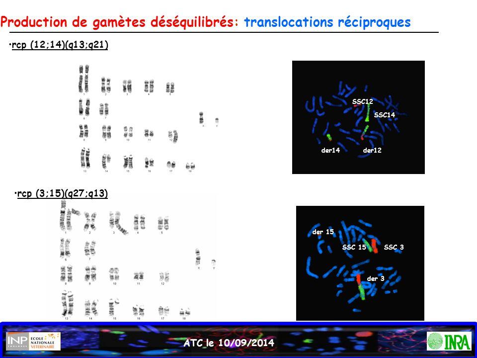 ATC le 10/09/2014 rcp (12;14)(q13;q21) rcp (3;15)(q27;q13) SSC12 SSC14 der14der12 SSC 3SSC 15 der 15 der 3 Production de gamètes déséquilibrés: transl