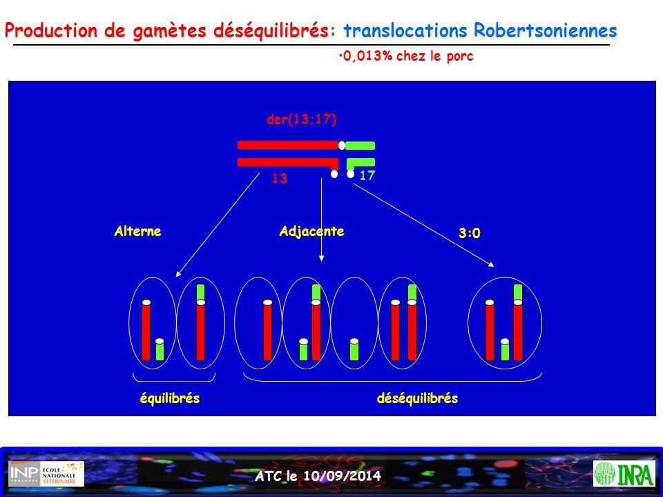 Production de gamètes déséquilibrés: translocations Robertsoniennes ATC le 10/09/2014 déséquilibréséquilibrés der(13;17) 13 17 AlterneAdjacente 3:0 0,