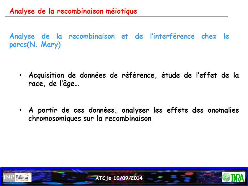 Analyse de la recombinaison et de l'interférence chez le porcs(N. Mary) Acquisition de données de référence, étude de l'effet de la race, de l'âge… A