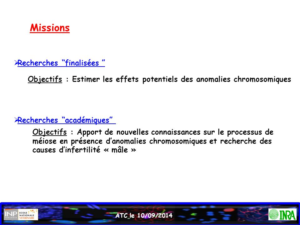 ATC le 10/09/2014 Les remaniements peuvent conduire à des anomalies de la méiose responsables de troubles de la spermatogenèse (Van Assche 1996; Martin, 2008) 1) Association des chromosomes remaniés avec le bivalent XY:  propagation de l'inactivation du chromosome X aux segments autosomiques associés (Jaafar et al., 1993)  transcription de gènes du chromosome X (Lifschytz and Lindsley, 1972) 2) Présence des protéines BRCA1, ATR and  H2AX sur les régions non appariées et génétiquement réprimées (Turner et al., 2005 ; Homolka et al., 2007, 2012) Troubles de la spermatogenèse