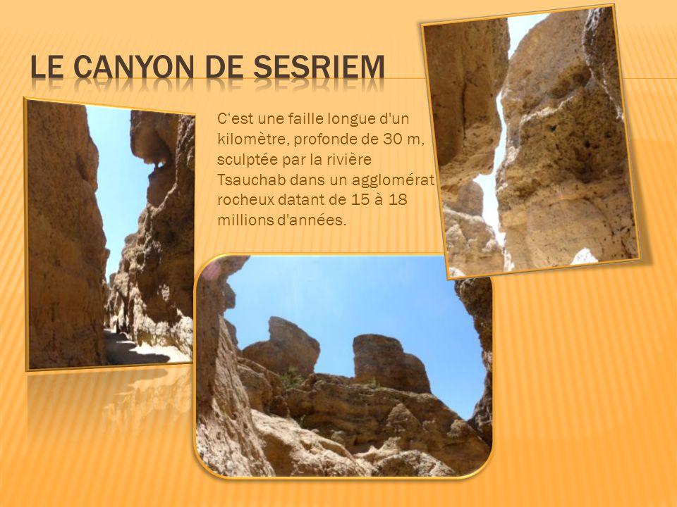 C'est une faille longue d un kilomètre, profonde de 30 m, sculptée par la rivière Tsauchab dans un agglomérat rocheux datant de 15 à 18 millions d années.