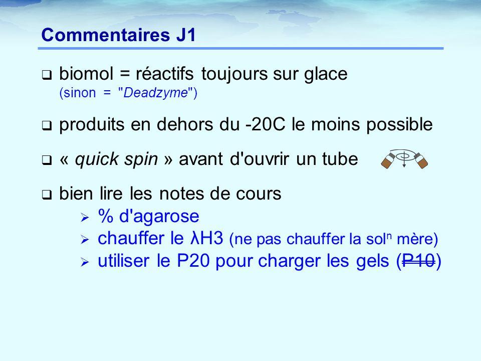 Commentaires J1  biomol = réactifs toujours sur glace (sinon =