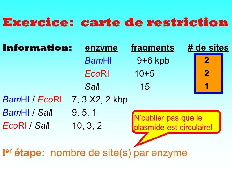 Information: enzyme fragments# de sites BamHI 9+6 kpb EcoRI 10+5 SalI 15 BamHI / EcoRI7, 3 X2, 2 kbp BamHI / SalI 9, 5, 1 EcoRI / SalI 10, 3, 2 I er é