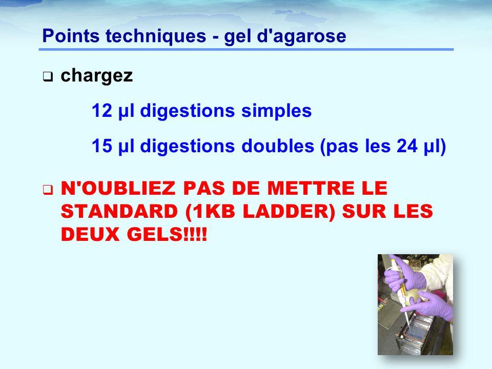Points techniques - gel d'agarose  chargez 12 μl digestions simples 15 μl digestions doubles (pas les 24 μl)  N'OUBLIEZ PAS DE METTRE LE STANDARD (1
