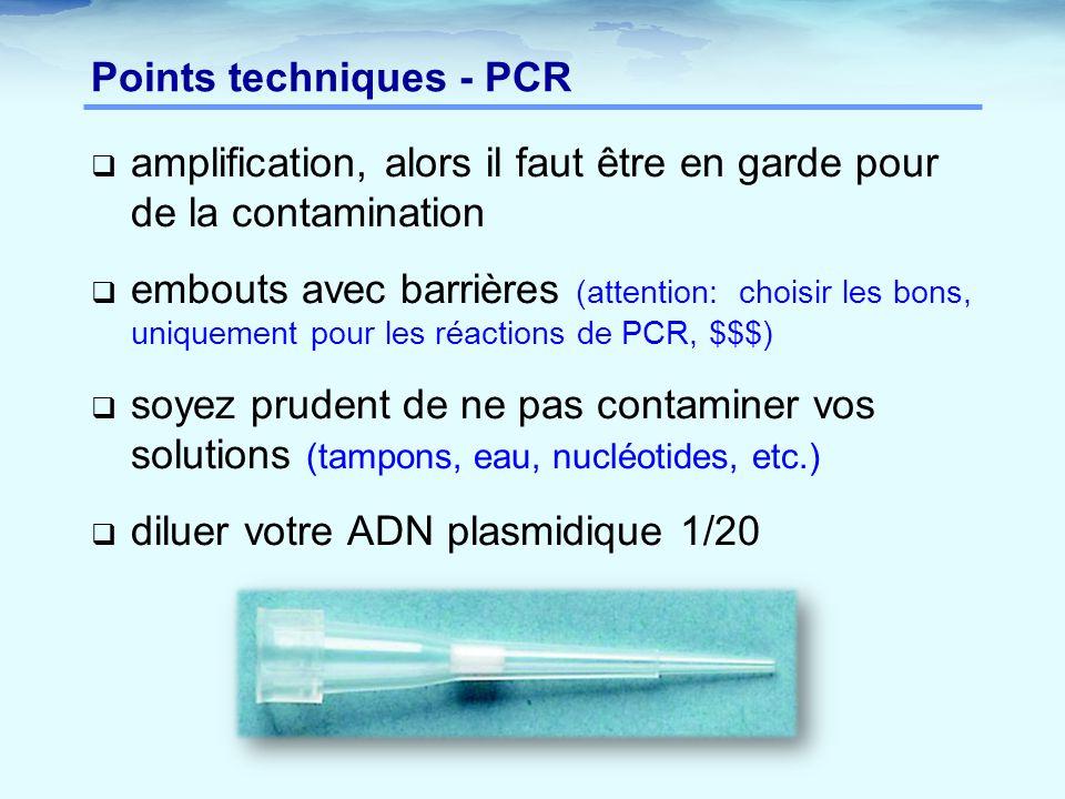 Points techniques - PCR  amplification, alors il faut être en garde pour de la contamination  embouts avec barrières (attention: choisir les bons, u