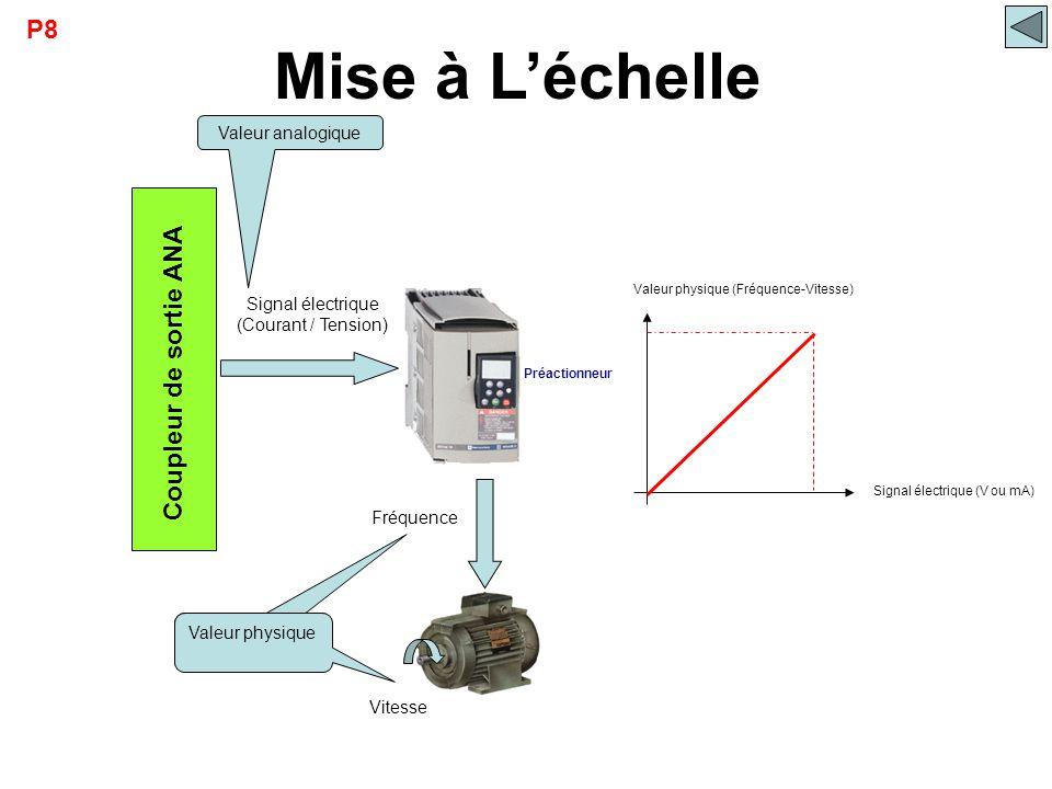 Mise à L'échelle Coupleur de sortie ANA Signal électrique (V ou mA) Valeur physique (Fréquence-Vitesse) Préactionneur Signal électrique (Courant / Ten