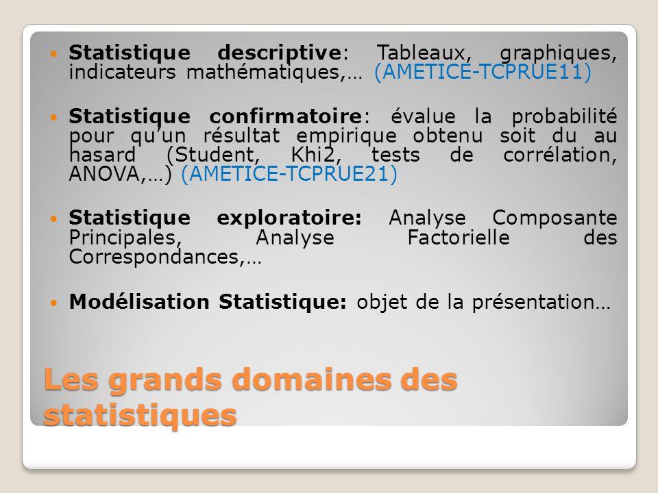Les grands domaines des statistiques Statistique descriptive: Tableaux, graphiques, indicateurs mathématiques,… (AMETICE-TCPRUE11) Statistique confirm